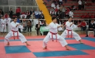 Bosphorous Cup 2011 - Istanbul
